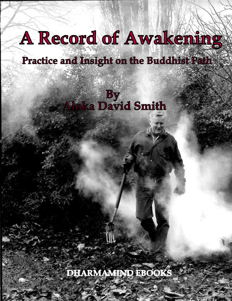 A Record of Awakening ecover